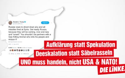 """""""Gemeinsam für Frieden in Syrien!"""" – DIE LINKE. Hamburg unterstützt den Aufruf"""