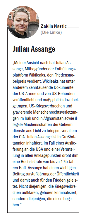 BerlZ Assange-Beitrag