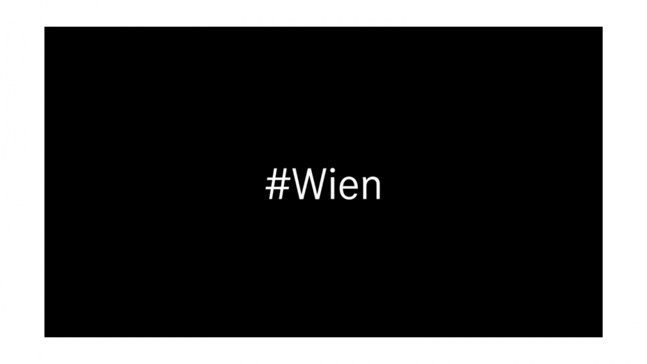 Solidarität mit Wien, erneut erschüttert ein grausamer Terroranschlag Europa